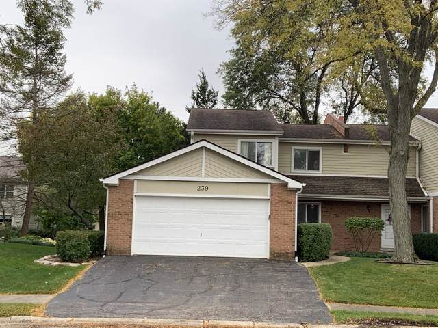 239 Golfview Terrace, Palatine, IL 60067 (MLS #10574874) :: Century 21 Affiliated