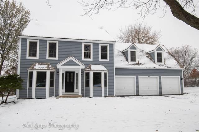 263 Concord Square, Gurnee, IL 60031 (MLS #10575033) :: The Dena Furlow Team - Keller Williams Realty