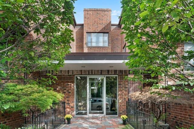 1651 N Dayton Street #303, Chicago, IL 60614 (MLS #10575084) :: Property Consultants Realty