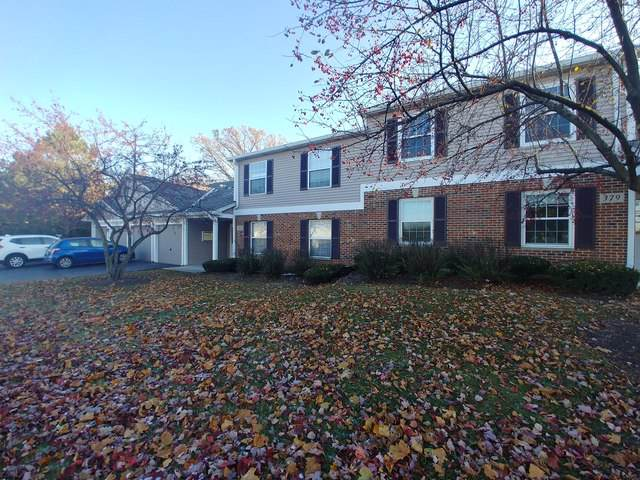 377 Woodview Circle C, Elgin, IL 60120 (MLS #10575308) :: Ryan Dallas Real Estate
