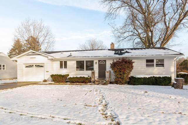 923 Diane Avenue, Elgin, IL 60123 (MLS #10575360) :: Ryan Dallas Real Estate