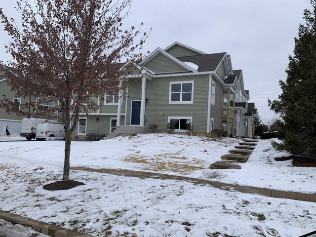 1363 Carolyn Court, Yorkville, IL 60560 (MLS #10575366) :: Angela Walker Homes Real Estate Group