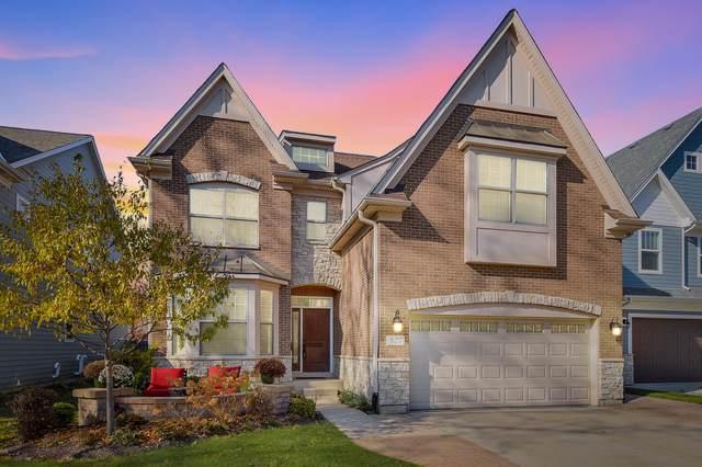 827 N Eagle Street, Naperville, IL 60563 (MLS #10575423) :: Ryan Dallas Real Estate