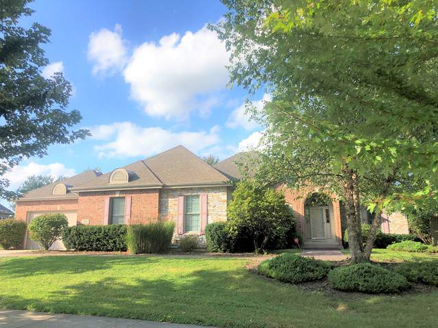 291 Fairway Drive, Beecher, IL 60401 (MLS #10575458) :: Berkshire Hathaway HomeServices Snyder Real Estate