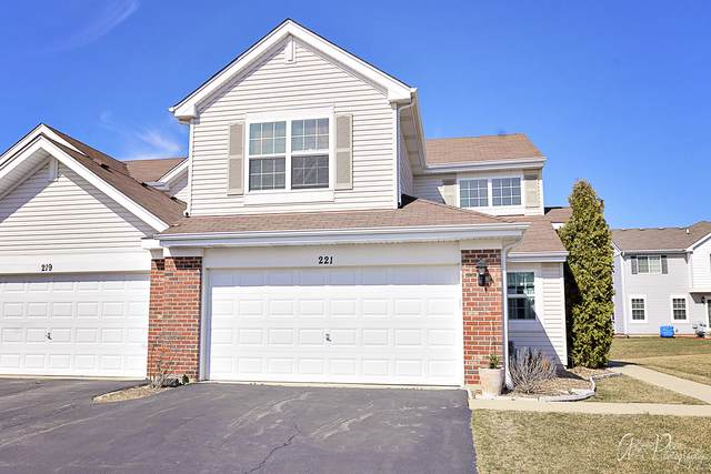 221 Macintosh Avenue, Woodstock, IL 60098 (MLS #10575491) :: The Dena Furlow Team - Keller Williams Realty
