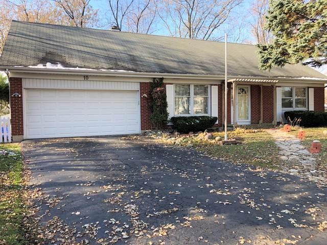 10 Dorchester Court, Bolingbrook, IL 60440 (MLS #10575571) :: RE/MAX IMPACT