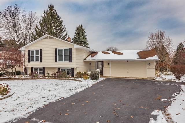 24W550 Ohio Street, Naperville, IL 60540 (MLS #10575623) :: Ani Real Estate