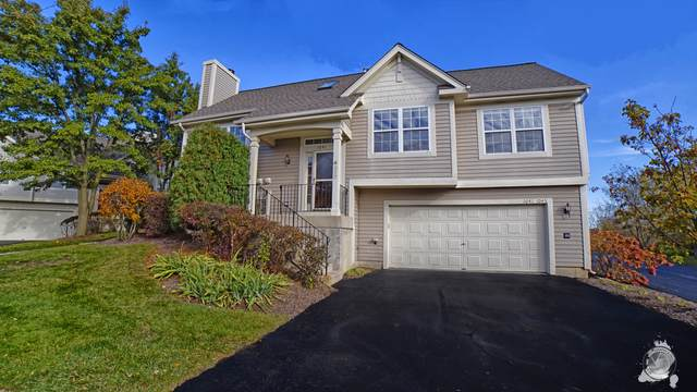 1041 Manchester Circle, Grayslake, IL 60030 (MLS #10575664) :: Angela Walker Homes Real Estate Group
