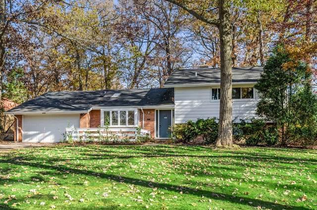 3131 Dato Avenue, Highland Park, IL 60035 (MLS #10575741) :: Helen Oliveri Real Estate