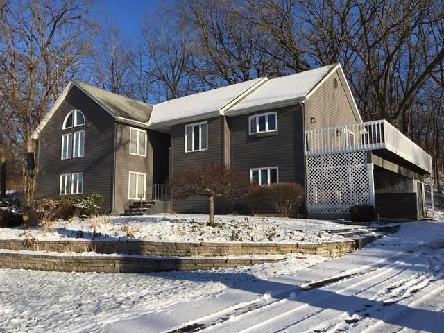 1524 Hillside Trail, Woodstock, IL 60098 (MLS #10575795) :: The Dena Furlow Team - Keller Williams Realty