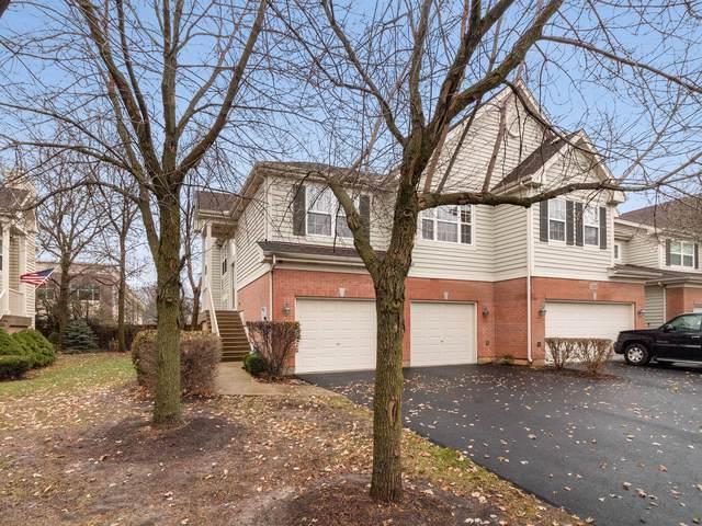1387 Danada Court, Naperville, IL 60563 (MLS #10575920) :: Ani Real Estate