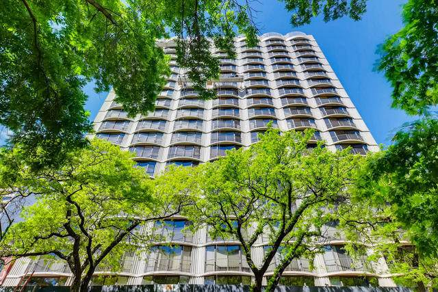 1440 N State Parkway 14D, Chicago, IL 60610 (MLS #10576118) :: John Lyons Real Estate