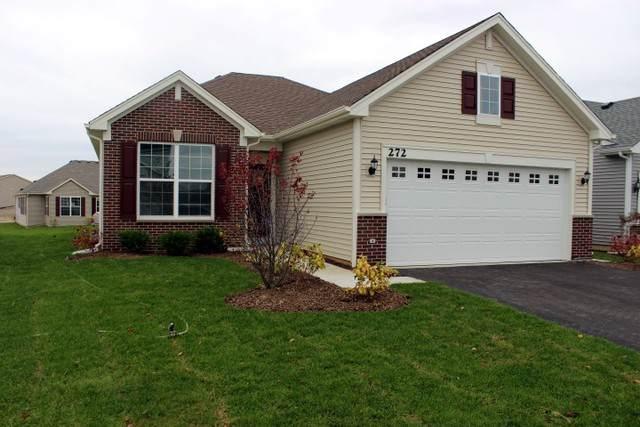 272 Monarch 211 Lane, Volo, IL 60020 (MLS #10576208) :: Property Consultants Realty