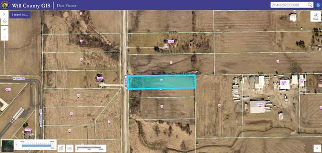 24855 S Murphy Lane, Monee, IL 60449 (MLS #10576317) :: RE/MAX IMPACT