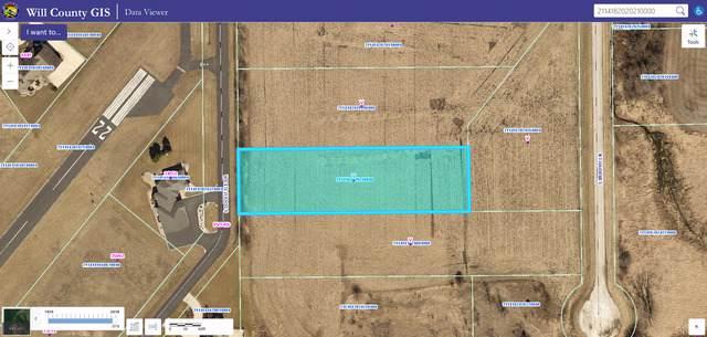 25200 S Murphy Lane, Monee, IL 60449 (MLS #10576322) :: RE/MAX IMPACT