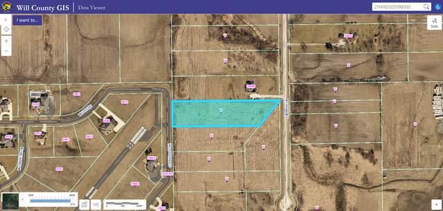 25000 S Murphy Lane, Monee, IL 60449 (MLS #10576334) :: RE/MAX IMPACT
