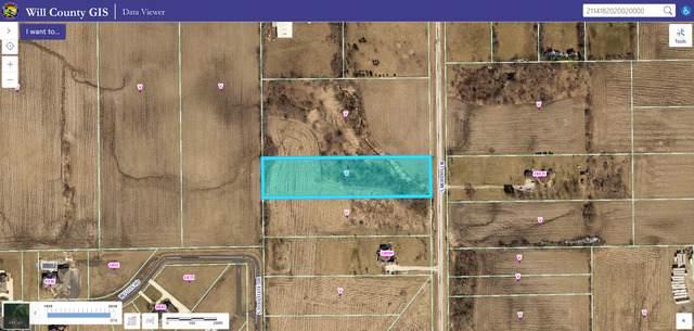 24700 S Murphy Lane, Monee, IL 60449 (MLS #10576341) :: RE/MAX IMPACT