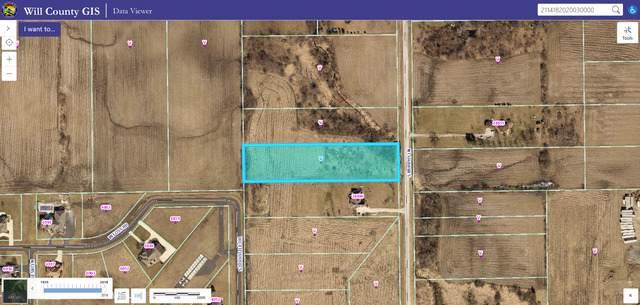 24800 S Murphy Lane, Monee, IL 60449 (MLS #10576345) :: RE/MAX IMPACT