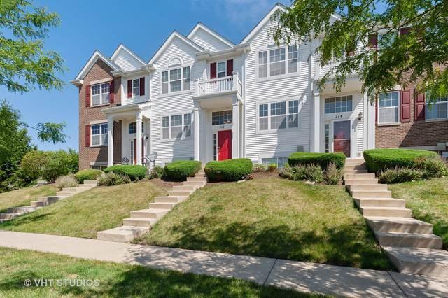 212 Niagara Drive, Volo, IL 60073 (MLS #10576481) :: Property Consultants Realty