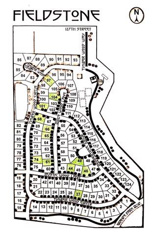 27018 Rustic Wood Way, Plainfield, IL 60585 (MLS #10576544) :: Lewke Partners