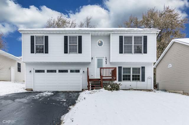 1402 Channel Beach Avenue, Johnsburg, IL 60051 (MLS #10576571) :: Lewke Partners