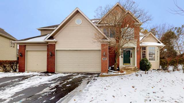 650 Kendridge Court, Aurora, IL 60502 (MLS #10576579) :: Touchstone Group