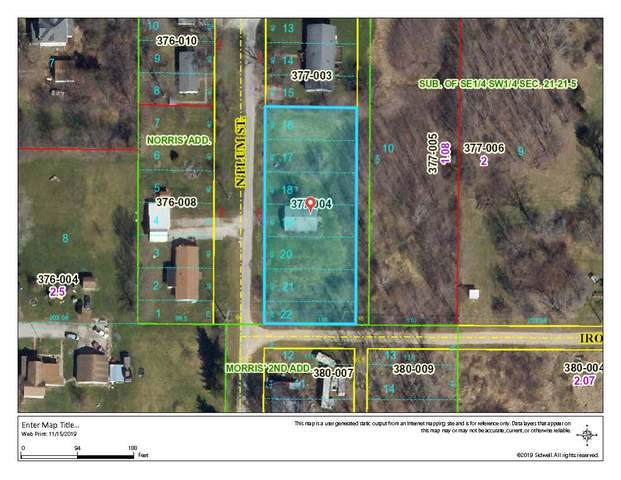1202 N Plum Street, Farmer City, IL 61842 (MLS #10576607) :: Angela Walker Homes Real Estate Group