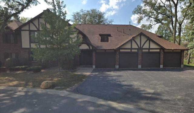 8254 Chestnut Drive 41D, Palos Hills, IL 60465 (MLS #10576871) :: The Wexler Group at Keller Williams Preferred Realty