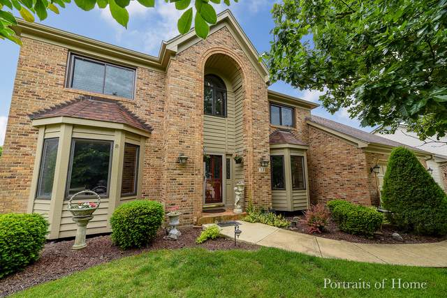 33 Briargate Circle, Sugar Grove, IL 60554 (MLS #10577031) :: The Mattz Mega Group