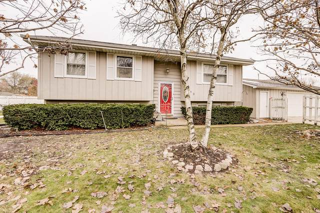1313 Lizabeth Lane, Waukegan, IL 60087 (MLS #10577334) :: The Dena Furlow Team - Keller Williams Realty