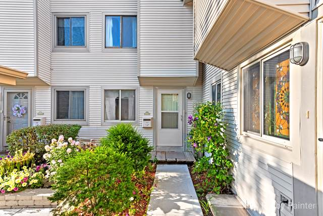 1024 Casa Drive #1, Schaumburg, IL 60173 (MLS #10577446) :: Property Consultants Realty
