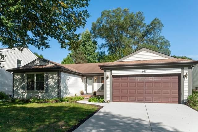 987 Knollwood Drive, Buffalo Grove, IL 60089 (MLS #10577467) :: Baz Network | Keller Williams Elite