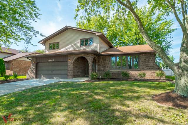13012 Meadowview Lane, Homer Glen, IL 60491 (MLS #10577663) :: The Wexler Group at Keller Williams Preferred Realty