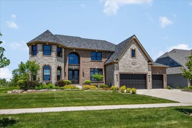 7206 Fitkins Drive, Oswego, IL 60543 (MLS #10577771) :: O'Neil Property Group