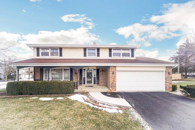 619 E Princeton Street, Palatine, IL 60074 (MLS #10577848) :: Ani Real Estate