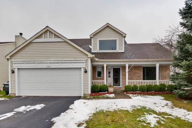 259 Hunters Way, Hainesville, IL 60030 (MLS #10577963) :: Property Consultants Realty