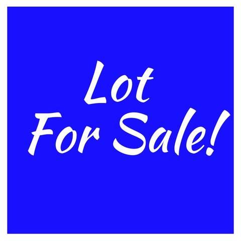 231 Oak Street, Frankfort, IL 60423 (MLS #10578013) :: Property Consultants Realty