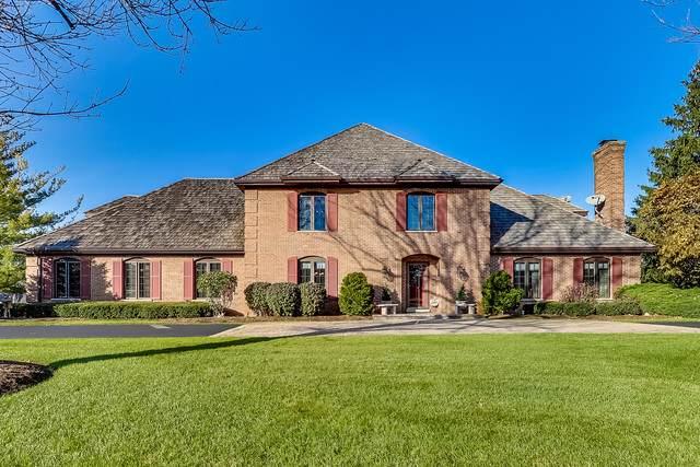 20805 N Meadow Lane, Deer Park, IL 60010 (MLS #10578049) :: Ani Real Estate