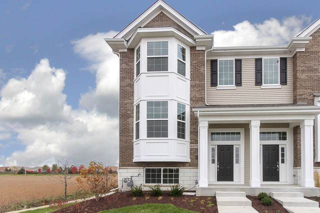4459 Monroe Lot#15.01 Court, Naperville, IL 60564 (MLS #10578070) :: Property Consultants Realty