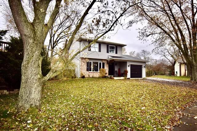 252 Oakridge Court, Bolingbrook, IL 60440 (MLS #10578138) :: Property Consultants Realty