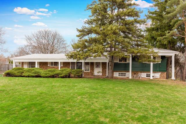662 W Bayer Drive, Palatine, IL 60067 (MLS #10578358) :: The Wexler Group at Keller Williams Preferred Realty