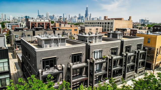 815 N Paulina Street 1S, Chicago, IL 60622 (MLS #10578366) :: Property Consultants Realty
