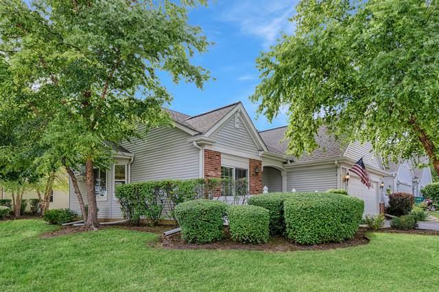 21041 W Snowberry Lane, Plainfield, IL 60544 (MLS #10578440) :: Ani Real Estate
