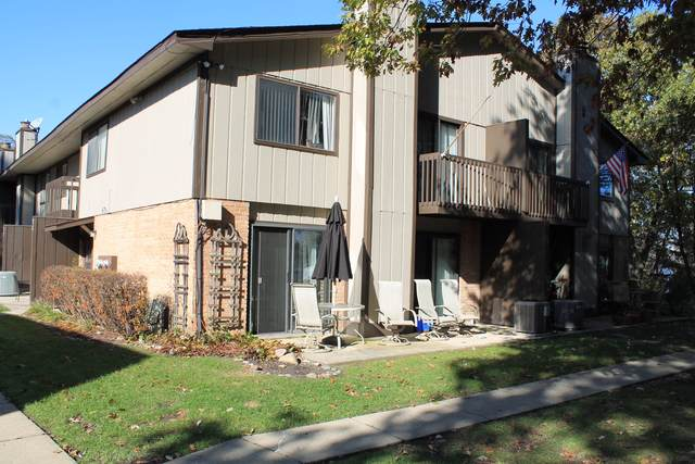73 Woodhills Bay Road, Fox Lake, IL 60020 (MLS #10578465) :: Ani Real Estate