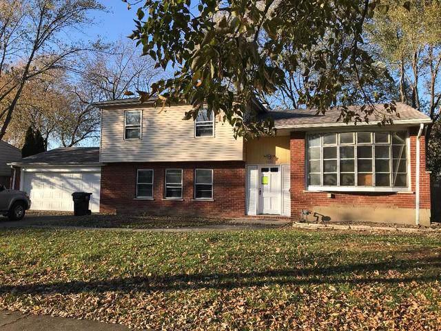 1356 E Rosita Drive, Palatine, IL 60074 (MLS #10578564) :: Suburban Life Realty