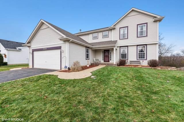 25524 W Brooks Farm Road, Round Lake, IL 60073 (MLS #10578630) :: BNRealty