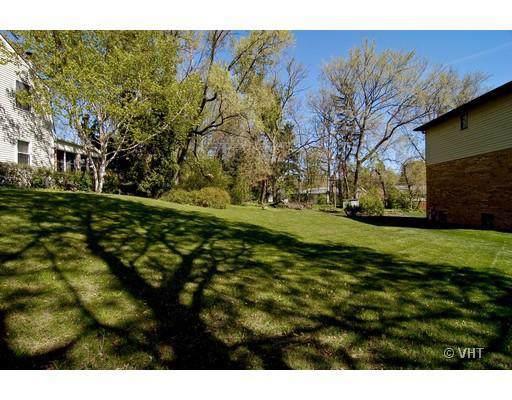 336 W Helen Road, Palatine, IL 60067 (MLS #10578832) :: Helen Oliveri Real Estate