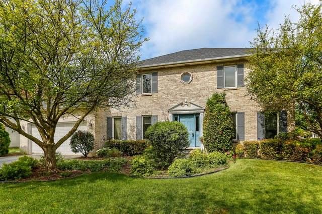 1108 Cordula Circle, Naperville, IL 60564 (MLS #10578854) :: Ani Real Estate