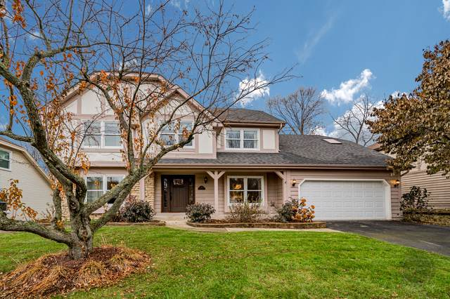 705 Roanoake Court, Naperville, IL 60565 (MLS #10578932) :: Baz Realty Network | Keller Williams Elite