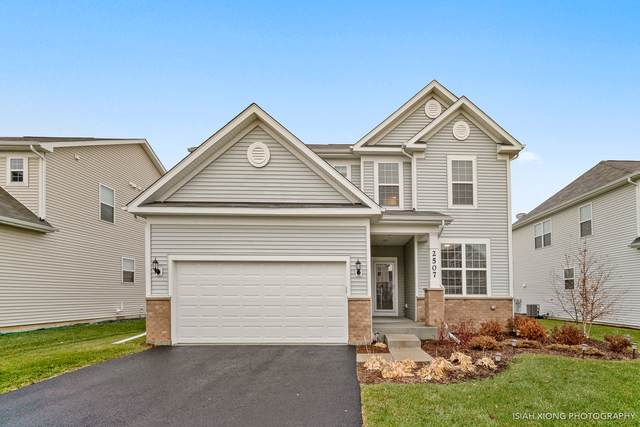 2507 Balsam Cove Road, Naperville, IL 60563 (MLS #10579394) :: Berkshire Hathaway HomeServices Snyder Real Estate